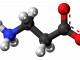 beta alinine